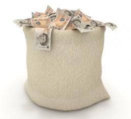 A bag of cash