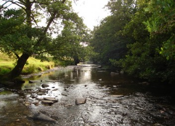 View down a river